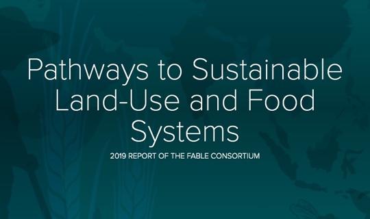 Informe FABLE: Trayectorias hacia el uso sostenible de la tierra y los sistemas alimentarios